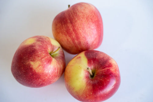 Apples - Jonagold