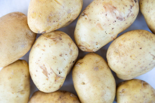 Potatoes - Kennebec - LOCAL Central Oregon