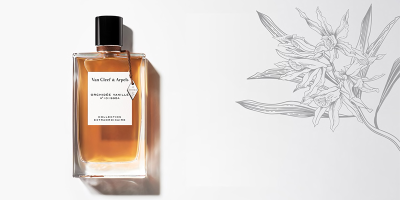 The Best Autumn Winter Fragrances