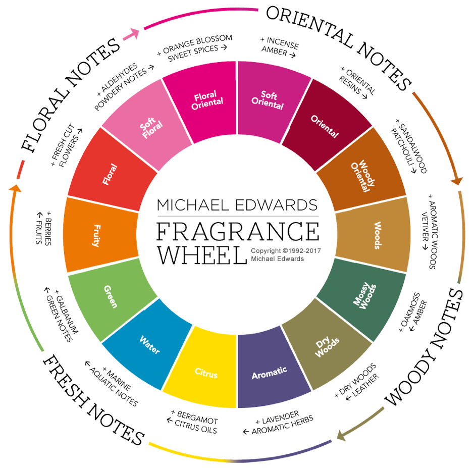 A Beginner's Guide To Perfume Types - Fragrance Families