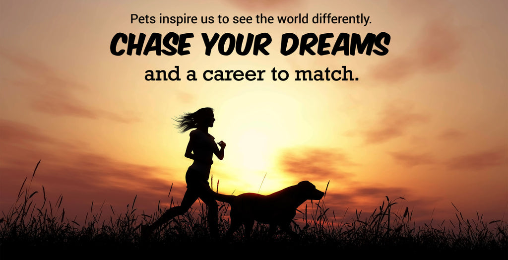 Chase your dreams and a career to match