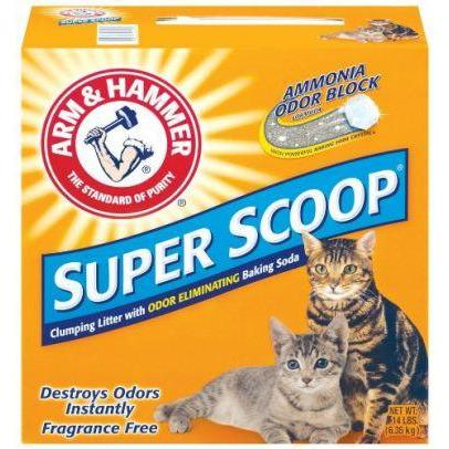 Arm & Hammer Super Scoop Fresh Scent  Cat Litter - PetMax
