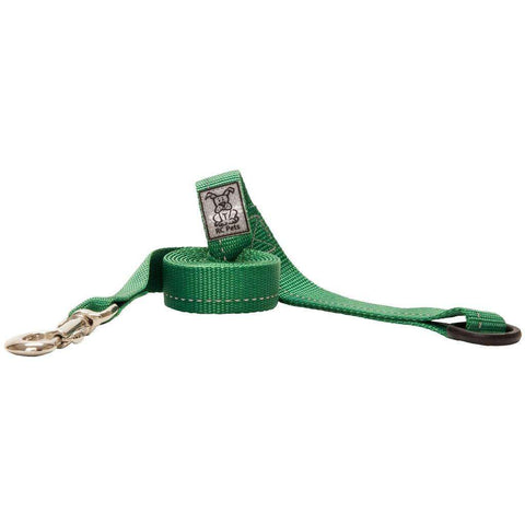 RC Dog Leash With Primary Colour Green