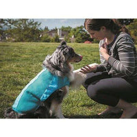 Canine Equipment Ultimate Cooling Coat  Dog Clothing - PetMax