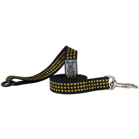 RC Dog Leash Pattern Heart Of Gold, Dog Leashes, Spring Collection - PetMax