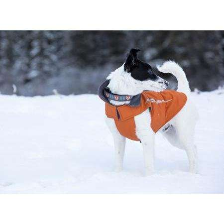 RC Cascade Dog Coat Burnt Orange | Dog Clothing -  pet-max.myshopify.com