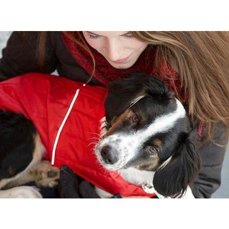 RC Dog Clothing Stratus Puffer Jacket Red  Dog Clothing - PetMax