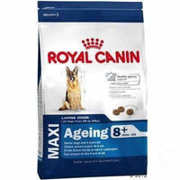 Royal Canin Dog Food Large Aging Care 8+ | Dog Food -  pet-max.myshopify.com