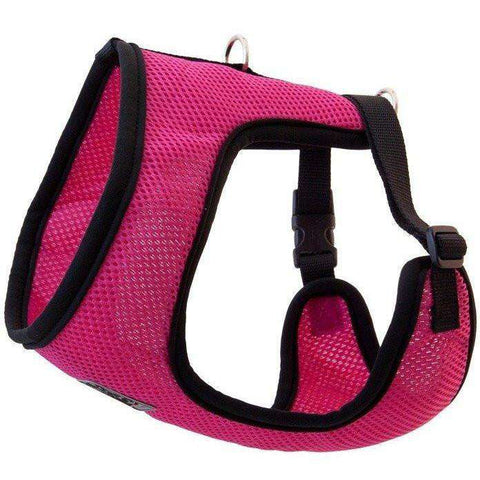 RC Cirque Soft Walking Harness Raspberry, Harnesses, Spring Collection - PetMax