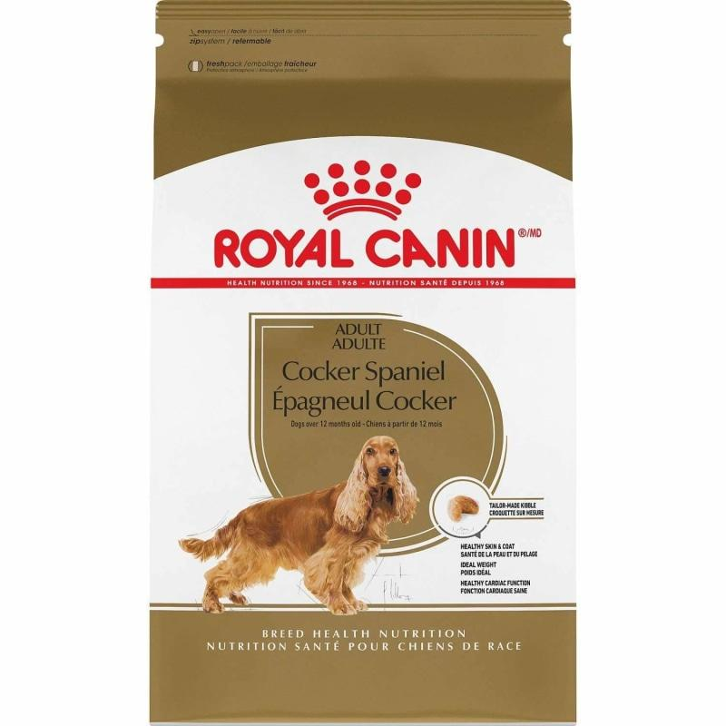 Royal Canin Dog Food Cocker Spaniel  Dog Food - PetMax