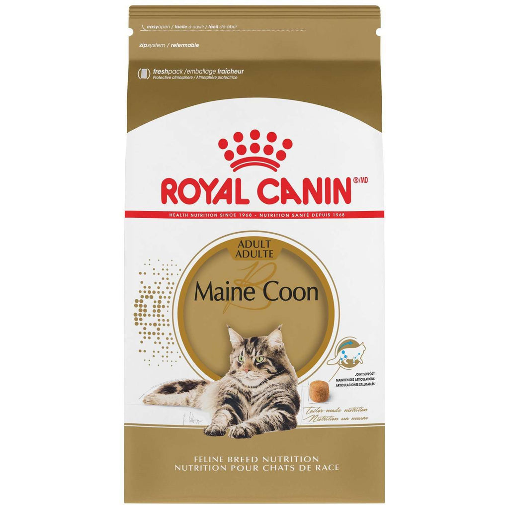 Royal Canin Cat Food Maine Coon  Dry Cat Food - PetMax