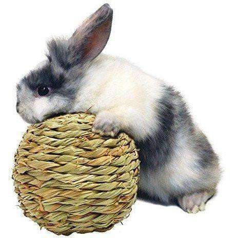 Marshall's Rabbit Woven Grass Play Ball | Small Animal Chew Products -  pet-max.myshopify.com