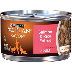 Pro Plan Canned Cat Food Adult Salmon & Rice  Canned Cat Food - PetMax