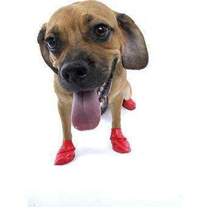 Pawz Dog Boots Red / Small Dog Clothing - PetMax