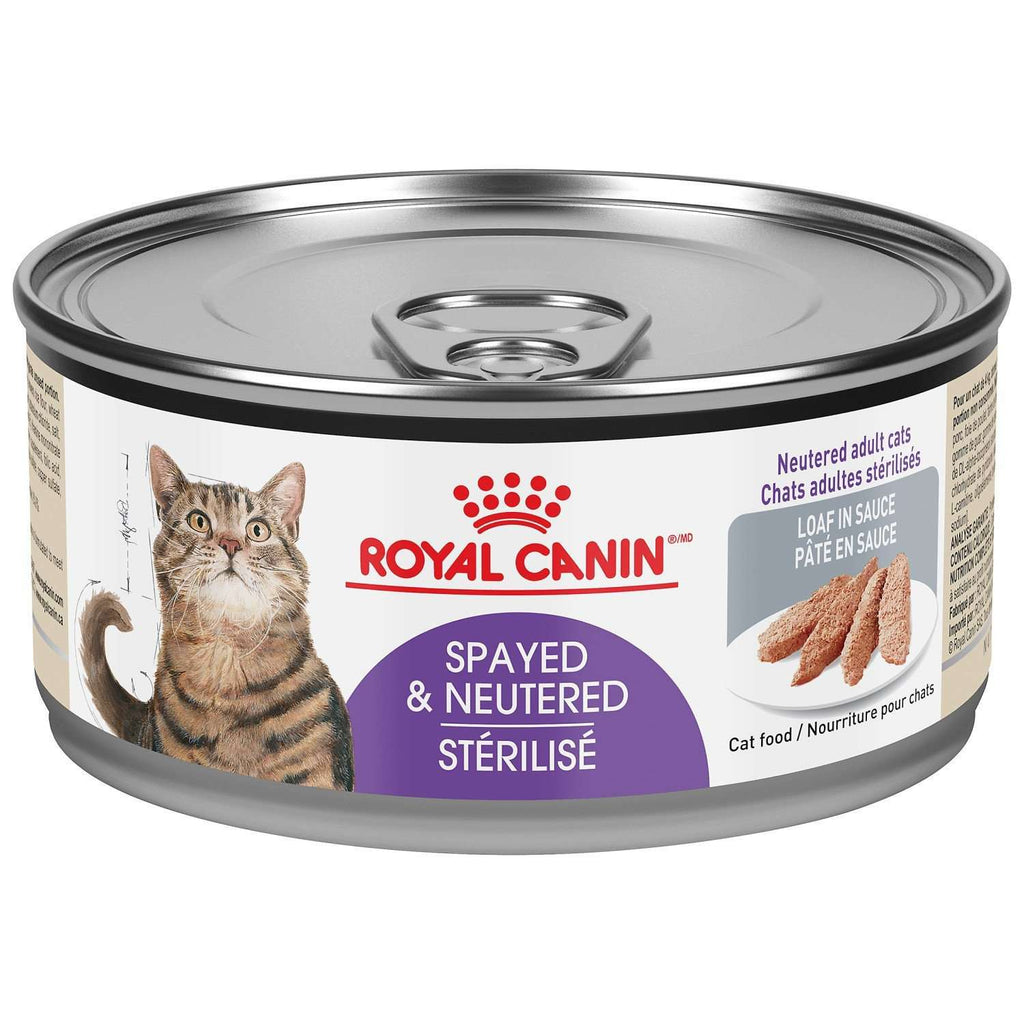 Royal Canin Canned Cat Food Spayed/Neutered Loaf In Sauce  Canned Cat Food - PetMax
