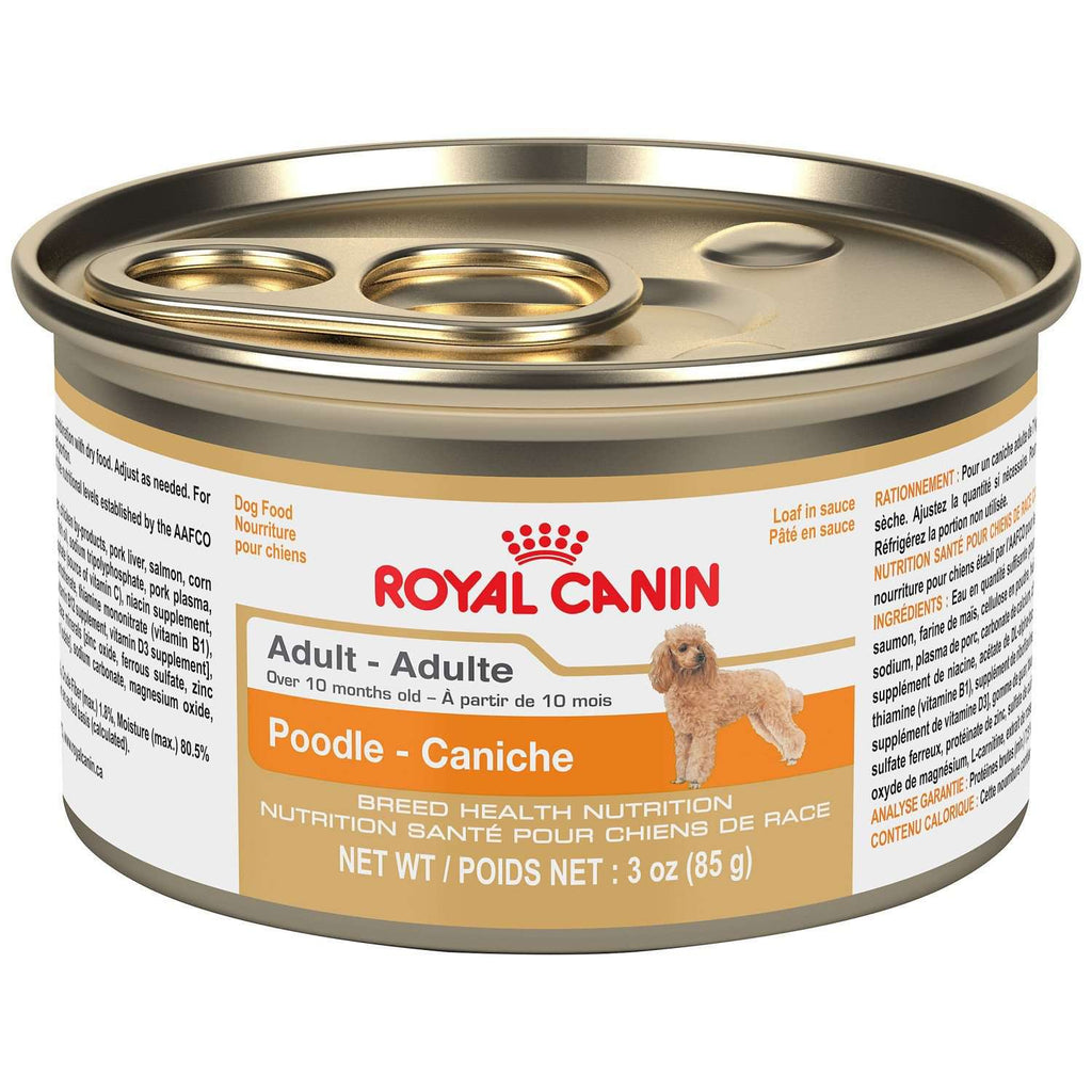 Royal Canin Canned Dog Food Poodle Formula  Canned Dog Food - PetMax