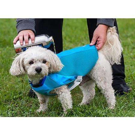 Canine Equipment Ultimate Cooling Coat, Dog Clothing, RC Pet Products - PetMax Canada