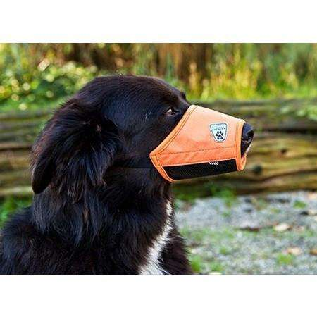 Canine Equipment Soft Fit Muzzle  Training Products - PetMax