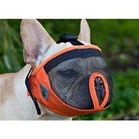 Canine Equipment Short Snout Muzzle | Training Products -  pet-max.myshopify.com