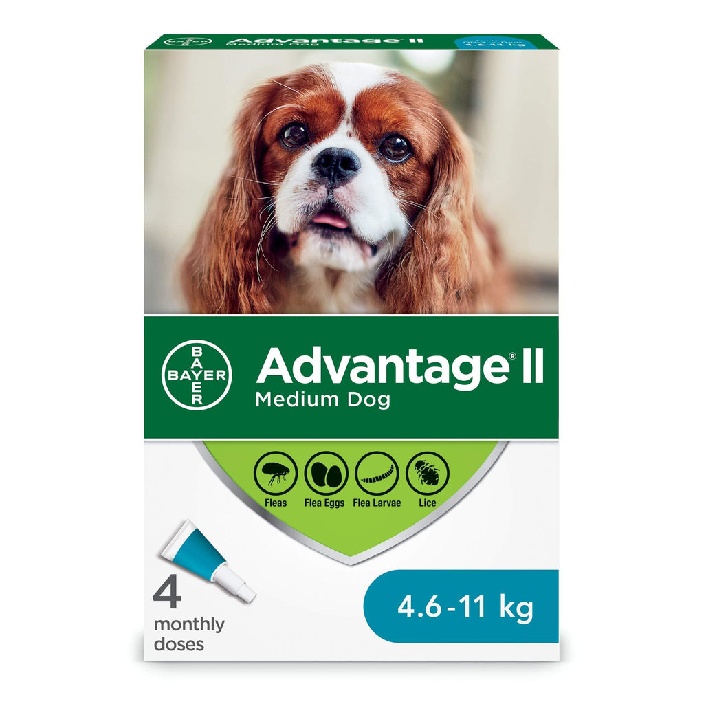 Advantage II For Medium Dogs 4.6Kg - 11Kg / 4 Pack Dog Flea & Tick - PetMax