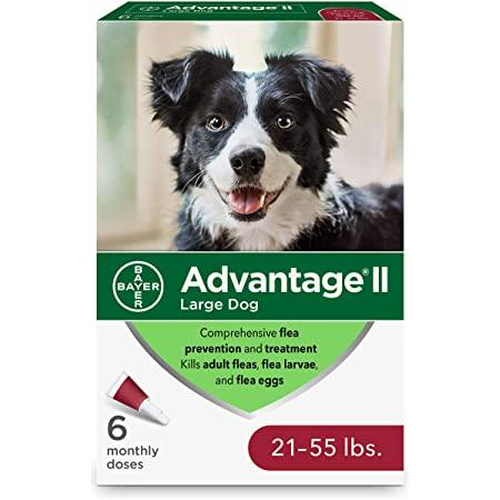 Advantage II For Large Dogs 11Kg - 25Kg / 6 Pack Dog Flea & Tick - PetMax