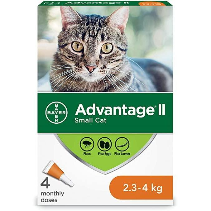 Advantage II For Small Cats  Flea & Tick - PetMax