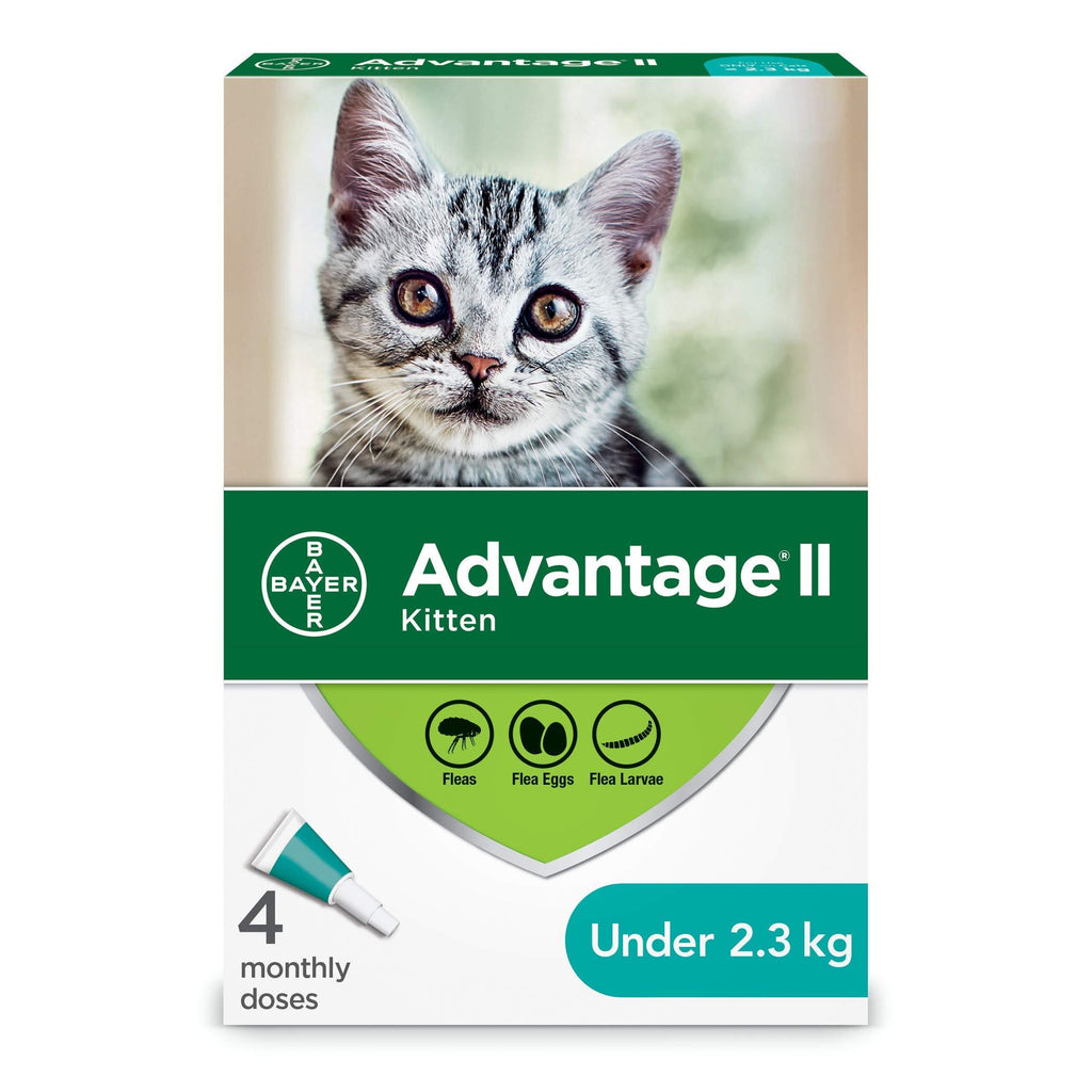 Advantage II For Kittens  Flea & Tick - PetMax