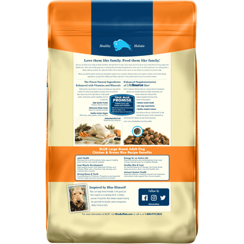 Blue Buffalo Life Protection Dog Food Large Breed Chicken & Rice