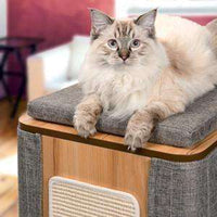 Vesper Cat Furniture V-Cubo Tower Stone  Cat Scratching Posts - PetMax