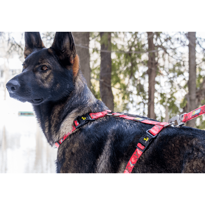 Be One Breed Silicone Harness Red Garden  Harnesses - PetMax