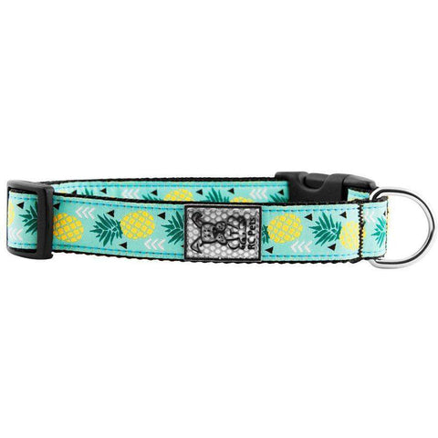 RC Dog Collar Pineapple Parade, Dog Collars, RC Pet Products - PetMax Canada