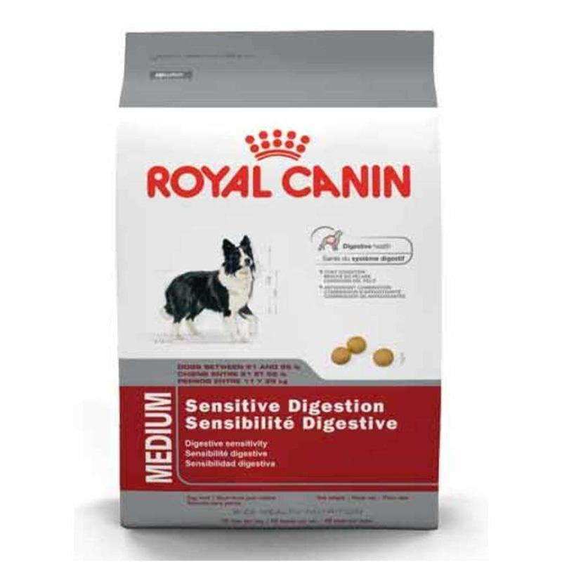 Royal Canin Dog Food Medium Digestive Care  Dog Food - PetMax