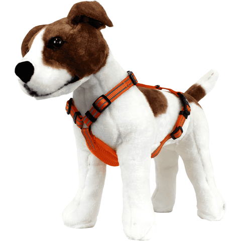 Alcott Adventure Harness, Harnesses, Alcott - PetMax