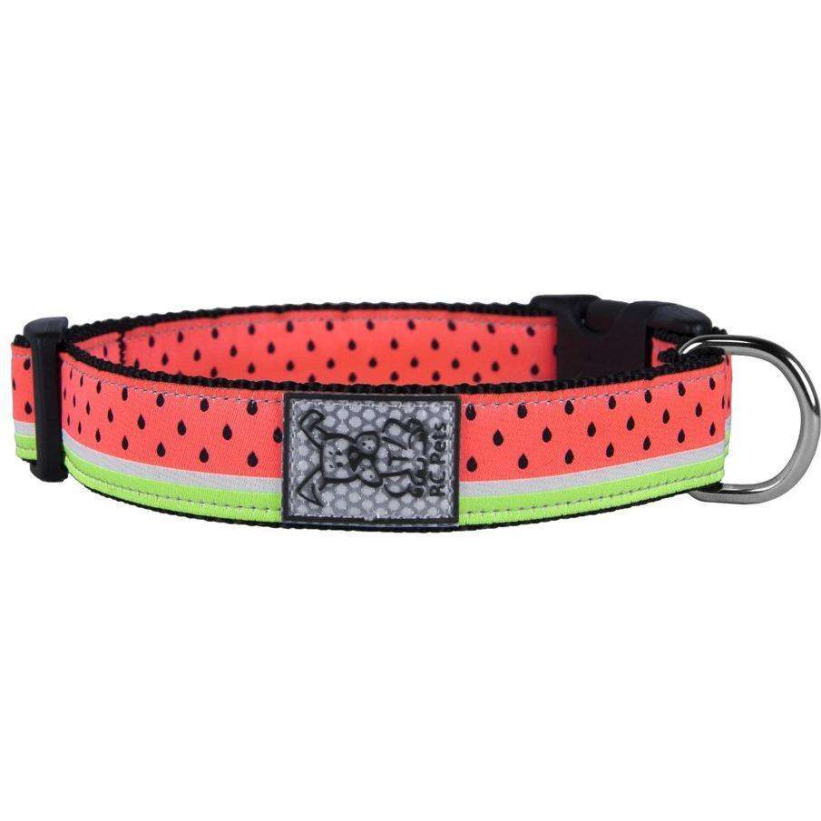 RC Dog Collar Watermelon  Dog Collars - PetMax