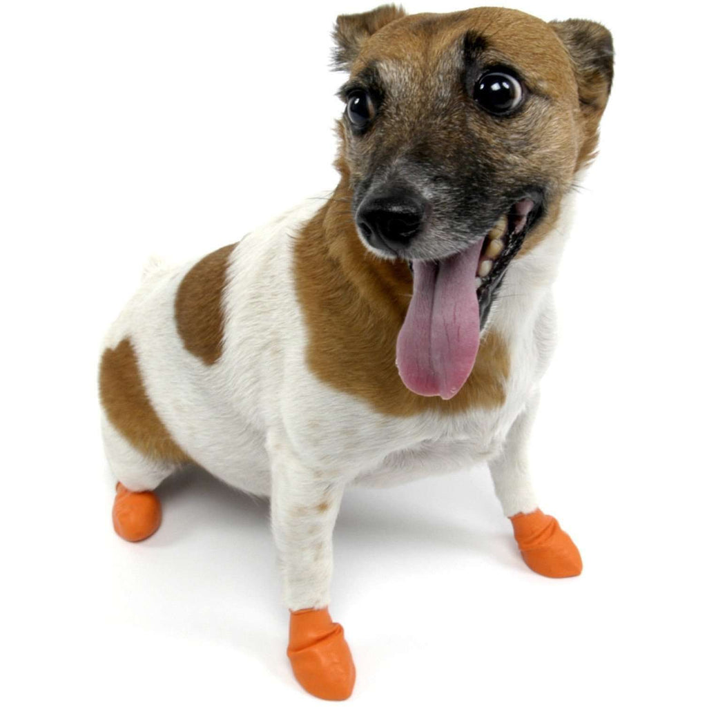 Pawz Dog Boots Orange / X-Small Dog Clothing - PetMax