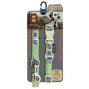 Zeus Arista Collar & Leash Set Calypso | Collar & Leash Set -  pet-max.myshopify.com
