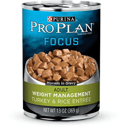 Pro Plan Canned Dog Food Focus Adult Weight Management Turkey & Rice  Canned Dog Food - PetMax
