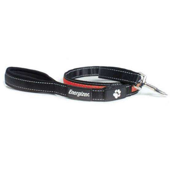 Energizer Blaze Red USB Dog Leash  Leashes - PetMax