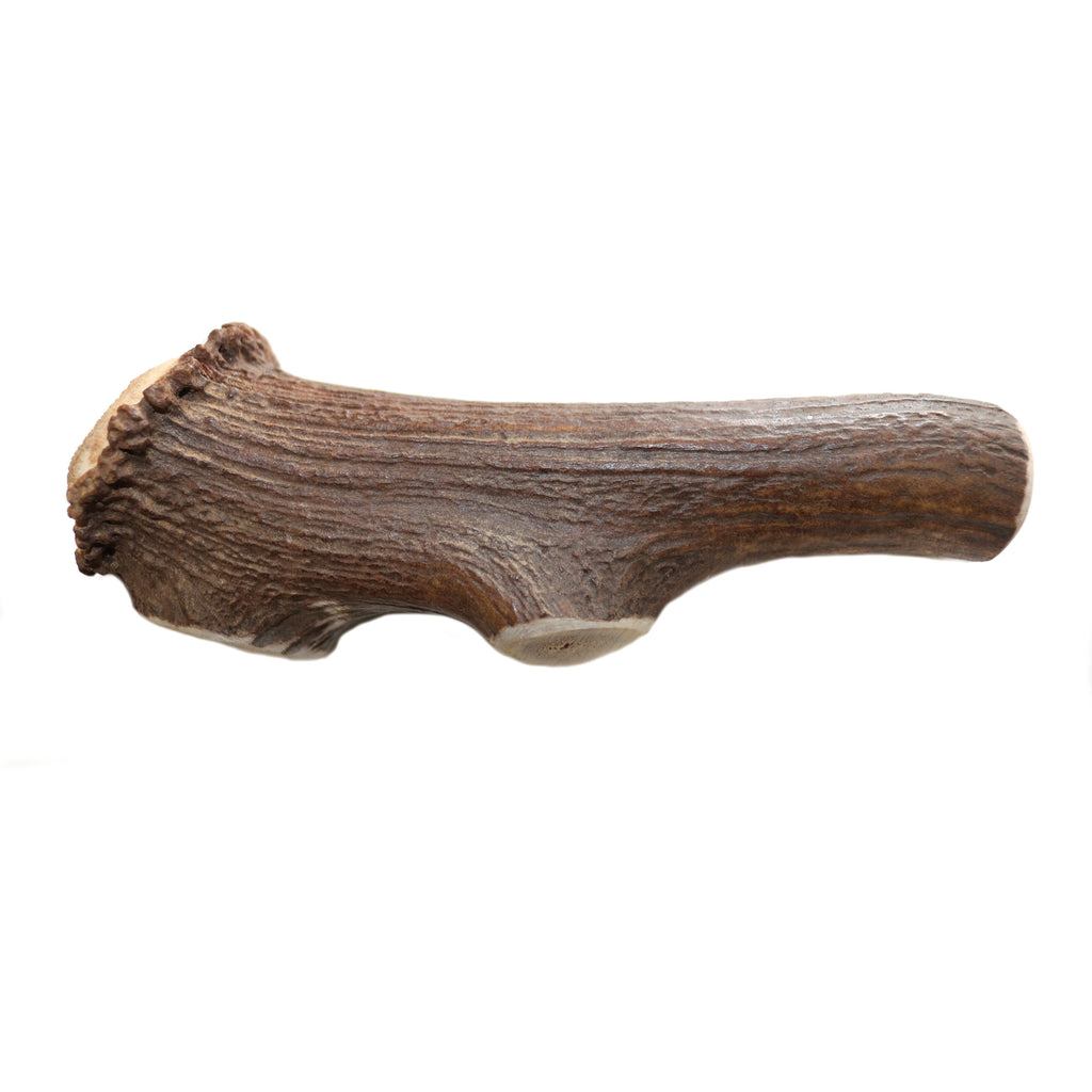 Dentler Whole Natural Deer Antler | Chew Products -  pet-max.myshopify.com