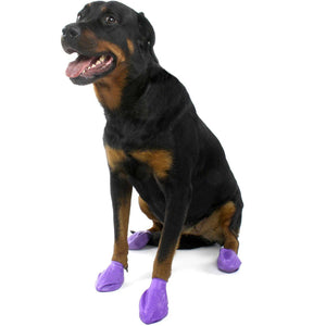 Pawz Dog Boots Purple / Large Dog Clothing - PetMax