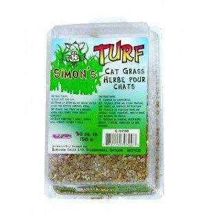 Simons Cat Grass, Cat Health Care, Miscellaneous - PetMax