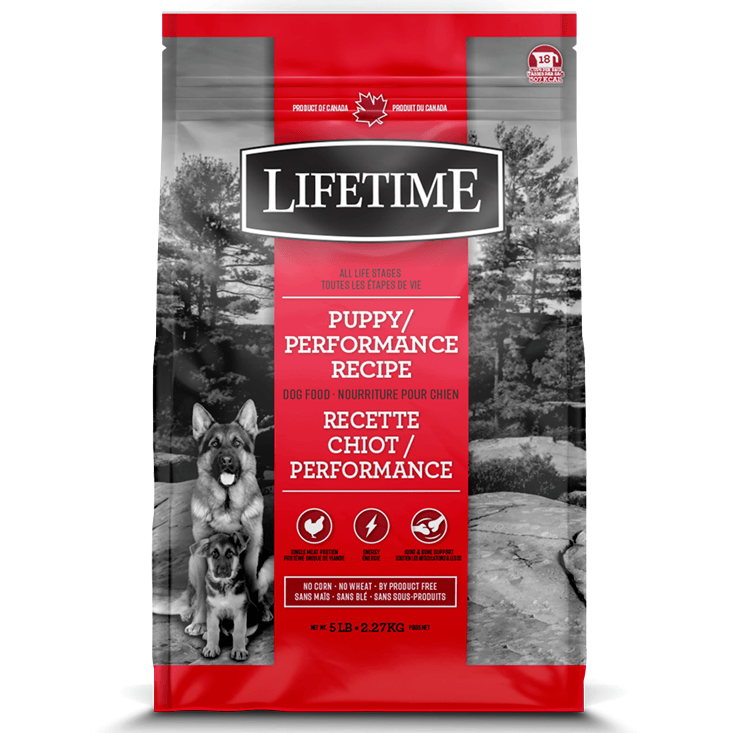 Lifetime All Life Stages Dog Food Puppy & Performance  Dog Food - PetMax