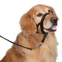 Halti Collar Training Products [variant_title] [option1] - PetMax.ca