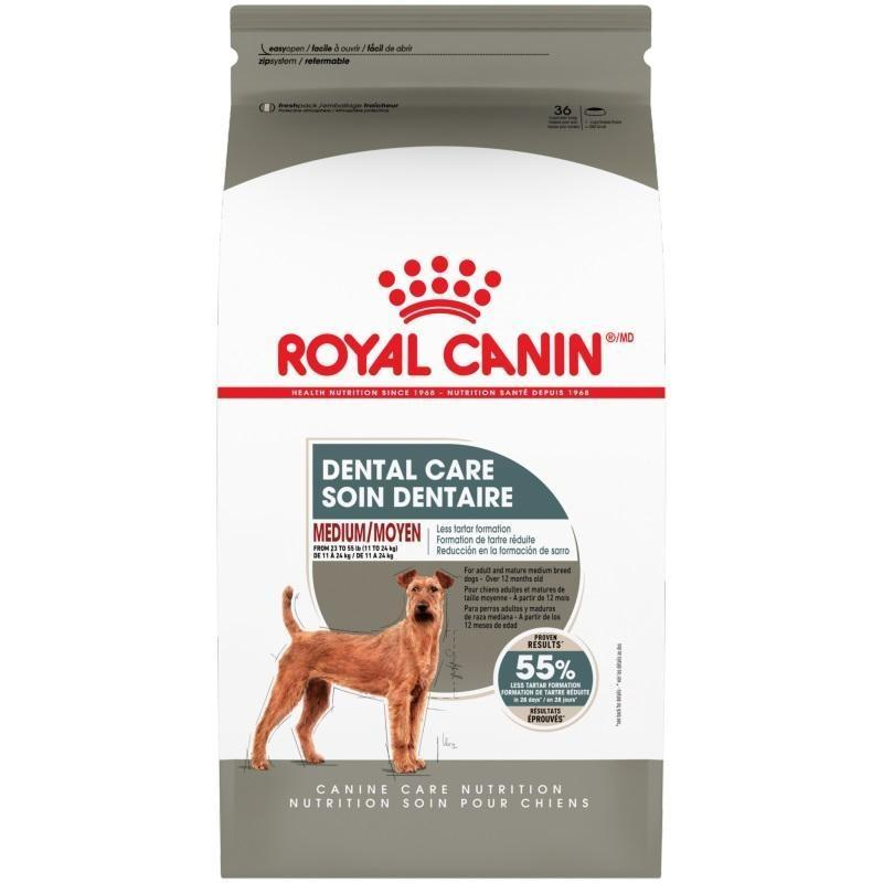 Royal Canin Dog Food Dental Care Medium | Dog Food -  pet-max.myshopify.com