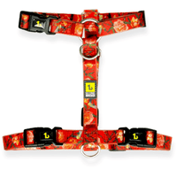 Be One Breed Silicone Harness Red Garden | Harnesses -  pet-max.myshopify.com