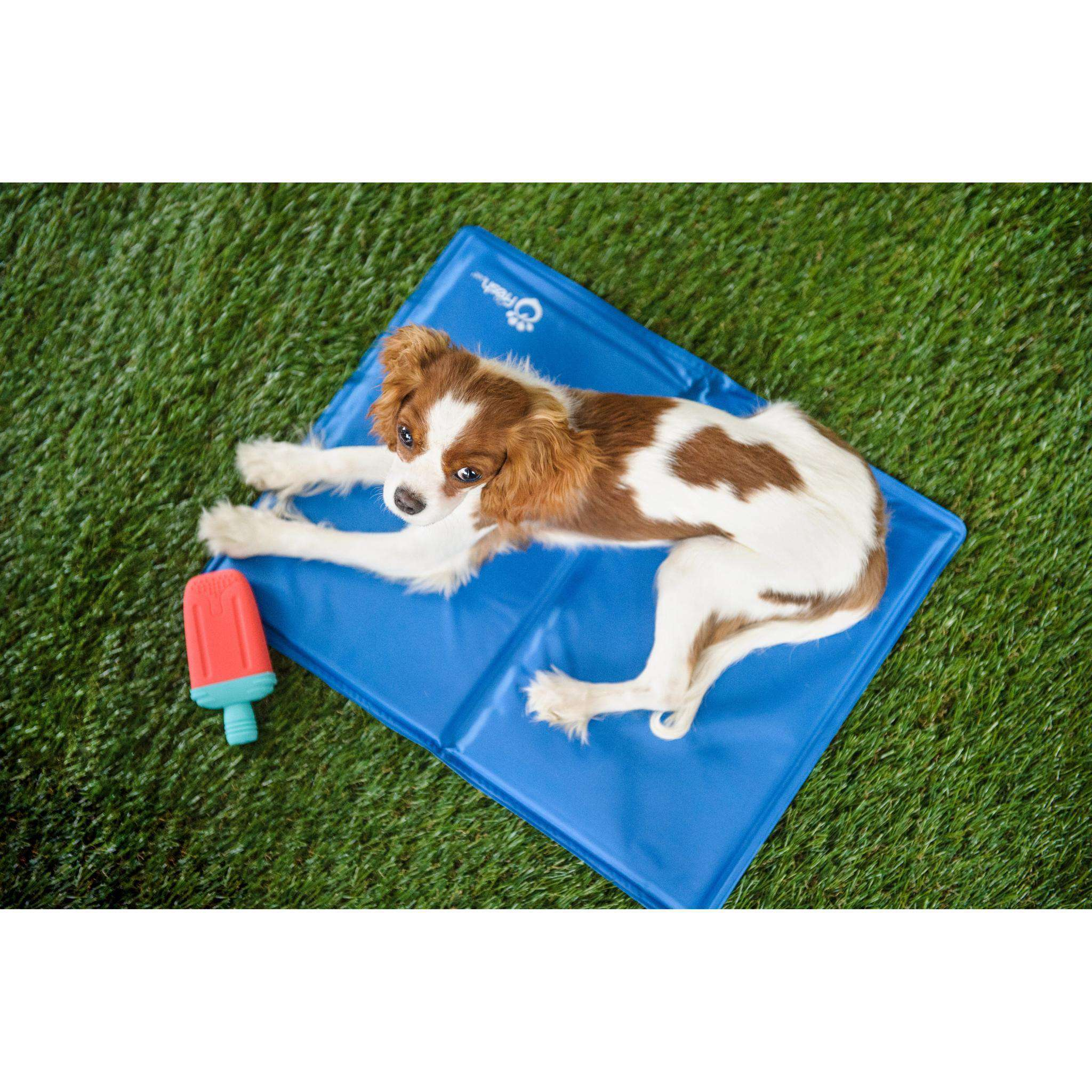Go Fresh Pet Ice Cooling Mat