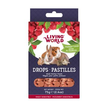 Living World Small Animal Drops Raspberry  Small Animal Food Treats - PetMax