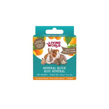 Living World Small Animal Mineral Block Orange 40g Small Animal Chew Products - PetMax