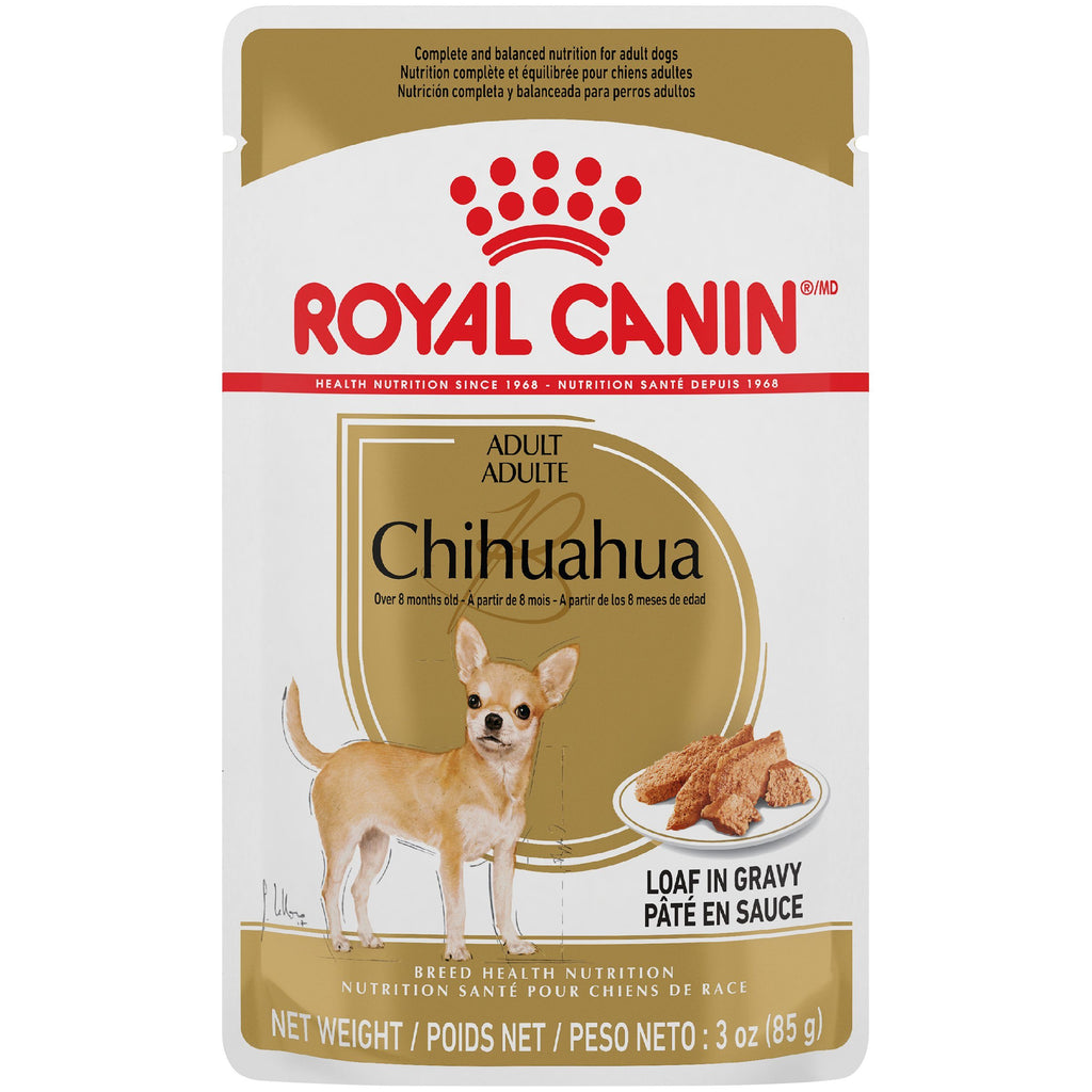 Royal Canin Wet Dog Food Pouch Chihuahua  Canned Dog Food - PetMax