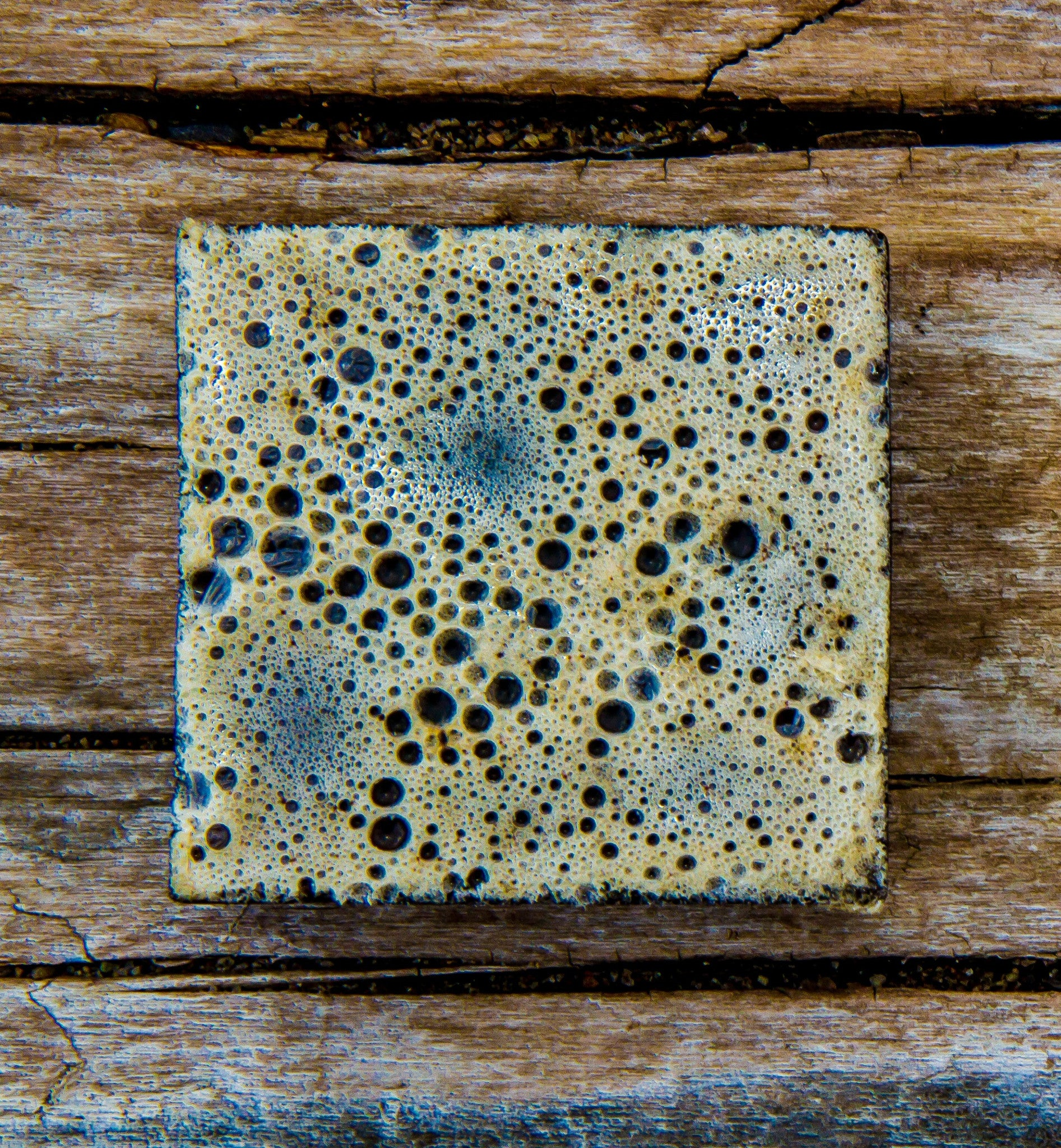 True Brew Exfoliating Soap - Parkdale Butter